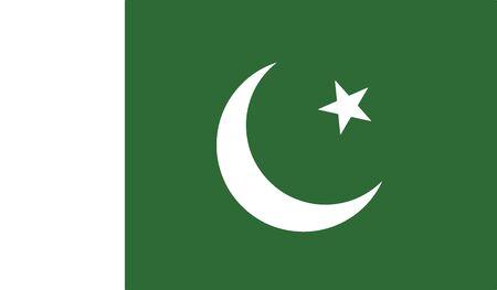 flag of pakistan vector icon illustration Illustration