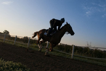 Jockey training Gallop on the track on his horse Stock Photo