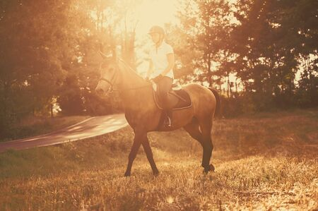 Effect backlighting - Riding a stroll through the fields in the nature
