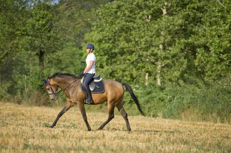 Young rider walks among the beautiful hills Stock Photo