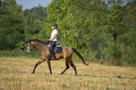 Riding a stroll through the fields in the nature