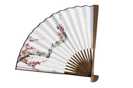 Traditionally painted Chinese fan.  The fan has been opened up to reveal a tree with blossom on it. Stock Photo - 5721117