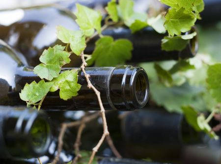 Used wine bottles with grape vines growing over them.  The source and the product together.