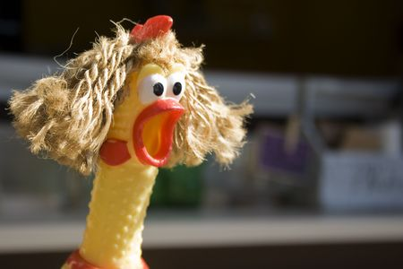 A rubber chicken has been given some hair, adding to the expression of surprise/shock on it.  Could be used for unbelievable 'sale' etc.
