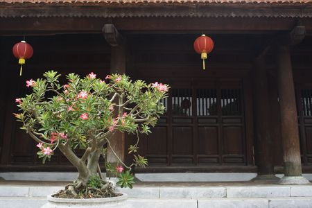 This was taken at the Temple of Literature in Hanoi.  This temple is dedicated to Confucius, a Chinese philosopher who put much emphasis on learning. Stock Photo - 5827256