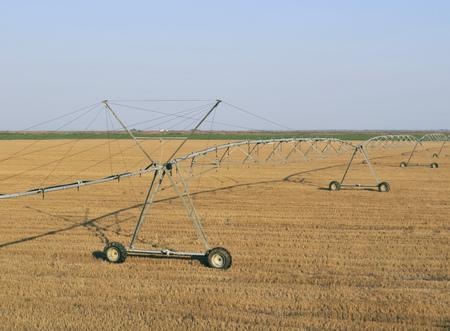 irrigation field: Irrigation sprinklers watering field, Italy