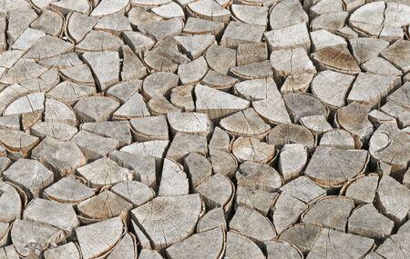sameness: Chopped and Stacked wood logs
