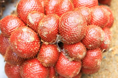 Thai sweet fruit,Zalacca  photo