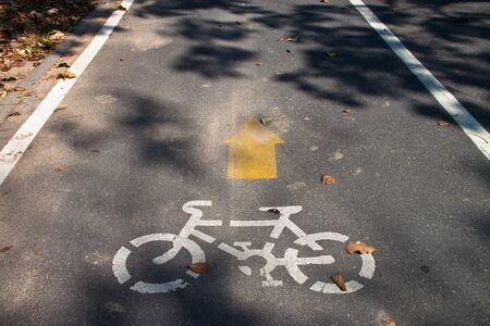 yellow arrows and bicycle sign path on the road photo