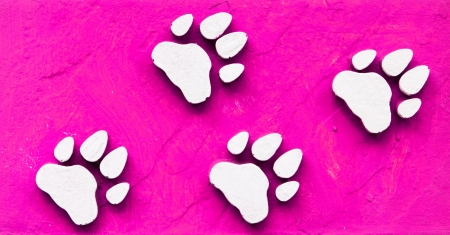 Dog s Footprints Seamless Pattern  Stock Photo - 15234953
