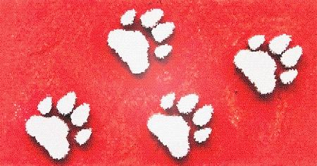 Dog s Footprints Seamless Pattern Stock Photo - 15234958