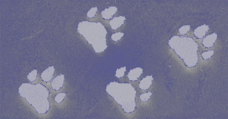 Dog s Footprints Seamless Pattern  Stock Photo - 15234956