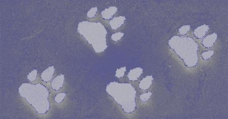 Dog s Footprints Seamless Pattern Stock Photo - 15234956