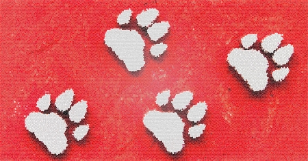 Dog s Footprints Seamless Pattern Stock Photo - 15234959