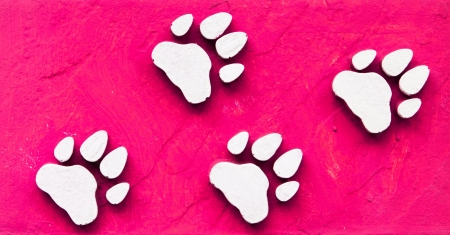 Dog s Footprints Seamless Pattern  Stock Photo - 15234952
