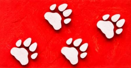 Dog s Footprints Seamless Pattern Stock Photo - 15234998