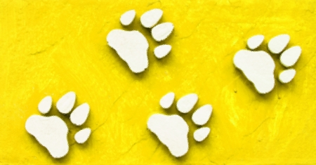 Dog s Footprints Seamless Pattern  Stock Photo - 15235003