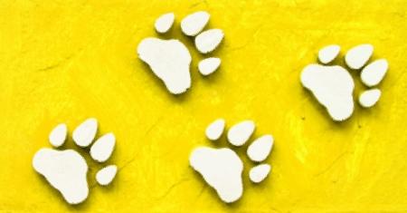 Dog s Footprints Seamless Pattern Stock Photo - 15235003