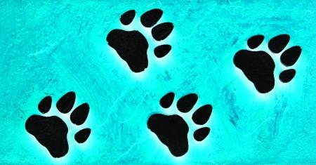 Dog s Footprints Seamless Pattern Stock Photo - 15235001