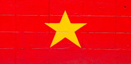 Vietnam flag painted on a brick wall photo