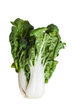 romaine: Romaine lettuce isolated on a white background