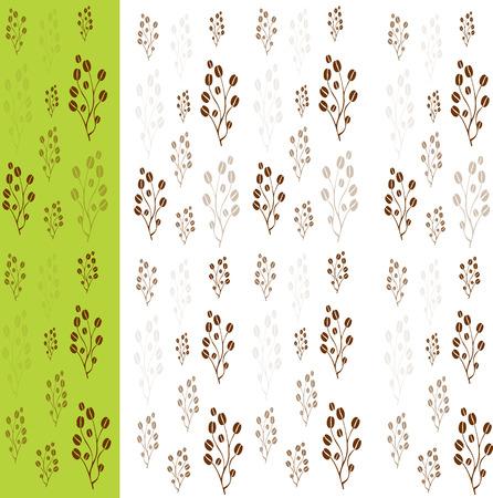 arbol de cafe: cafeto del vector con los granos de caf�