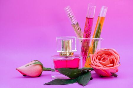 Essential oil in bottles extracted from rose. Stock fotó