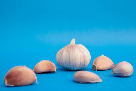 Garlic and Garlic Cloves place on blue background. Banque d'images