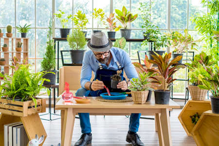 An elderly man handsome have mustache wearing glasses is happy with tree care and decoration. It is a hobby of home gardening, living happily after retirement.