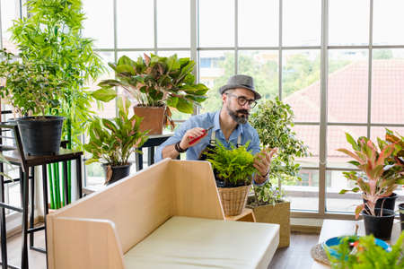 An elderly man handsome with have mustache wearing glasses is happy with tree care. is a hobby of gardening at home, living happily after retirement. Concepts nature and environment.