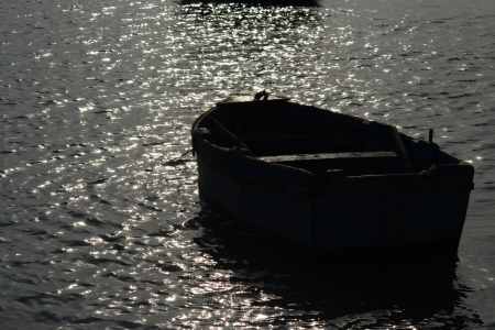Rowing boat in backlight Stock Photo - 18057317