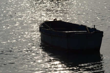 Rowing boat in backlight photo