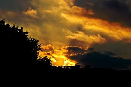 Rays of the setting sun photo