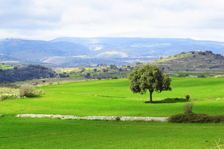 mountain landscape - Green planet - Earth - panorama Stock Photo