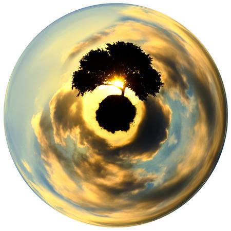 Oak tree at sunset on a globe - planet - Globe photo