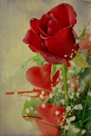 saint valentine s day: Texture with red roses and hearts