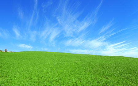 Beautiful hill with green grass with the clouds in the blue sky.