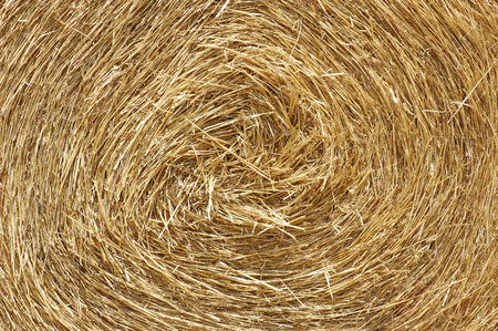 Bale - dry grass or forage for livestock, Hay stack straw texture, agriculture background
