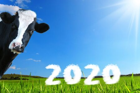 Friesian milk wishes for the end of the year 2020 Stock Photo