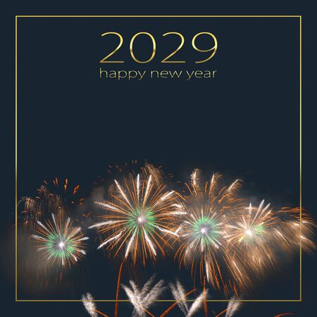 Colorful fireworks exploding and filling the darkness of the night sky against a dark background with the words 2029 happy new year. Imagens
