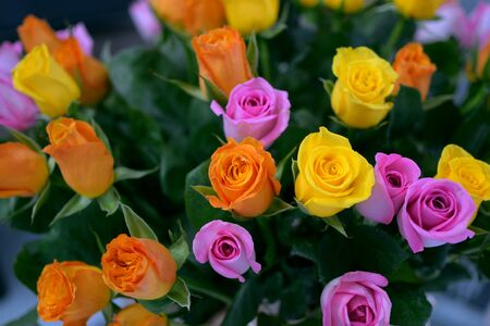 bunch of orange, pink and yellow roses