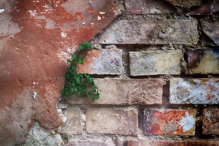 Old broken brick wall made of plaster. Old broken brick wall with cracked plaster