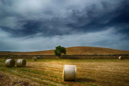 Storm over a stubble field at sunset Stok Fotoğraf