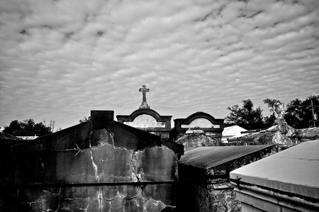 crypt: Cemetery in New Orleans