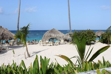 Landscape at the tropical beach photo