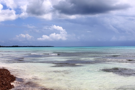Caribbean See at the shore of Saona Island, patches of coral reefs
