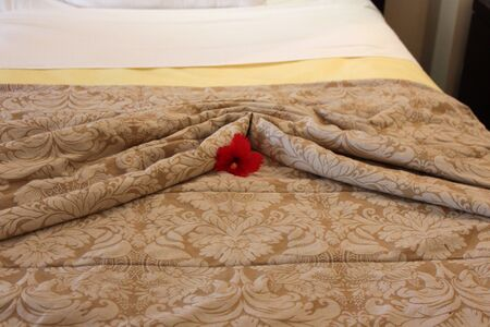 Hotel bed neatly made and decorated with a fresh red hibiscus Imagens