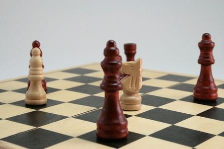 gamesmanship: el foco en el caballo de ajedrez Foto de archivo