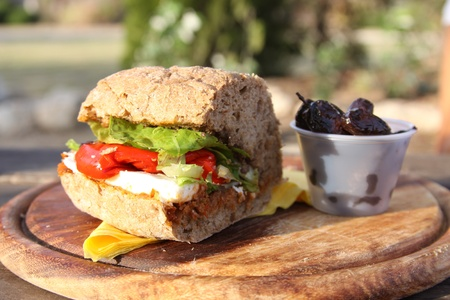 outdoor eating: healthy sandwich outdoor eating