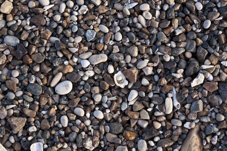 big and small: various colored small river stones and shells Stock Photo